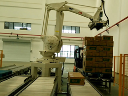 China palletizing system supplier